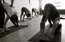 Asthanga Vinyasa Yoga-15